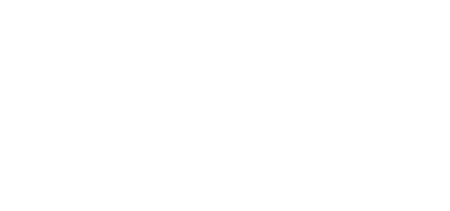 camaleo | wohn-werkstatt