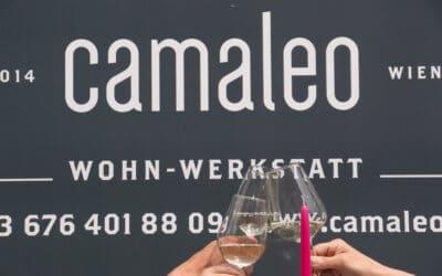 1 Jahr camaleo – Ein Grund zu feiern!