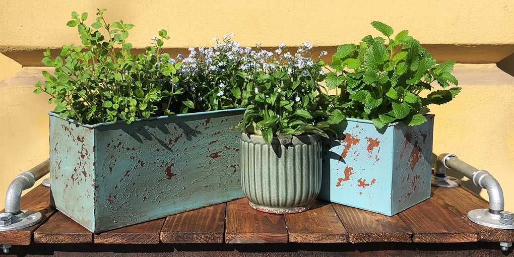 Workshop Vase Blumentopf verschönern upcyclen
